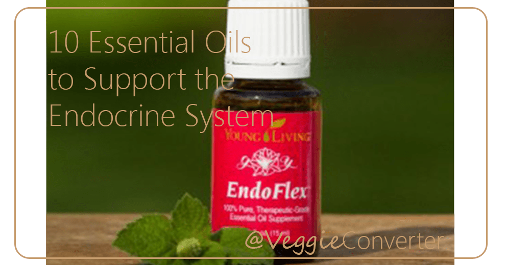 Essential Oils to Support Your Endocrine System| @VeggieConverter