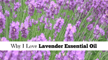 Why I Love Lavender Essential Oil