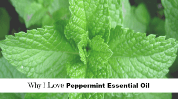 Why I Love Peppermint Essential Oil