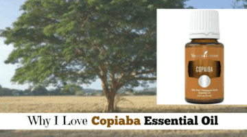 Why I Love Copaiba Essential Oil