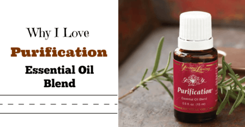 Why I Love Purification Essential Oil Blend
