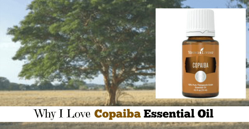 Why I Love Copiaba Essential Oil