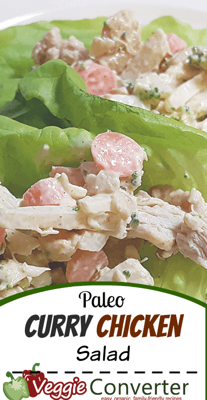 Paleo Curry Chicken Salad Recipe