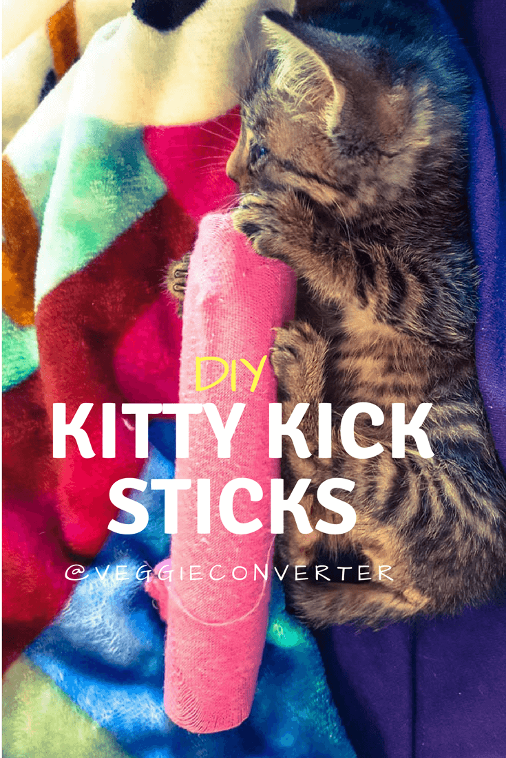 Kitty Kick Sticks | @VeggieConverter