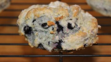 Bug and Cat's Blueberry Lemon Scones